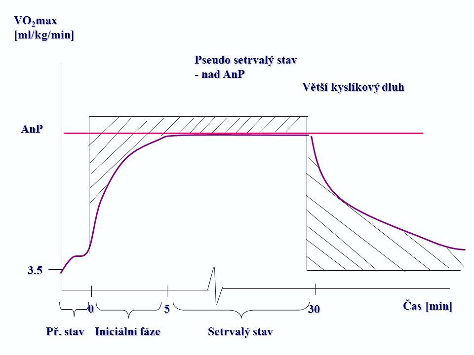 VO2max [ml/kg/min] Pseudo setrvalý stav. - nad AnP. Větší kyslíkový dluh. AnP. 3.5. Čas [min]